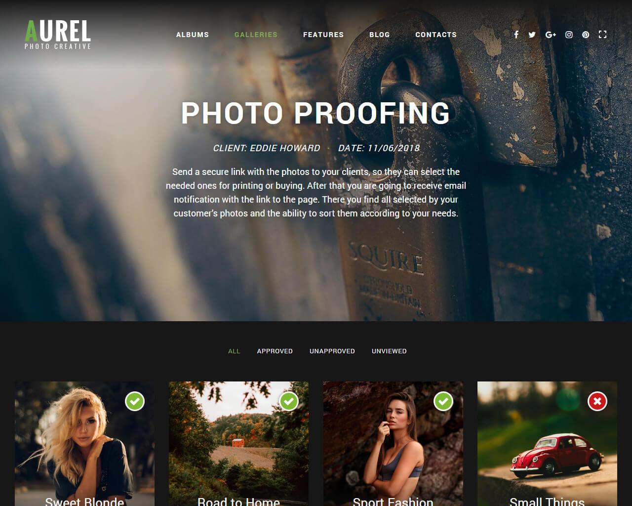 Aurel Website Template