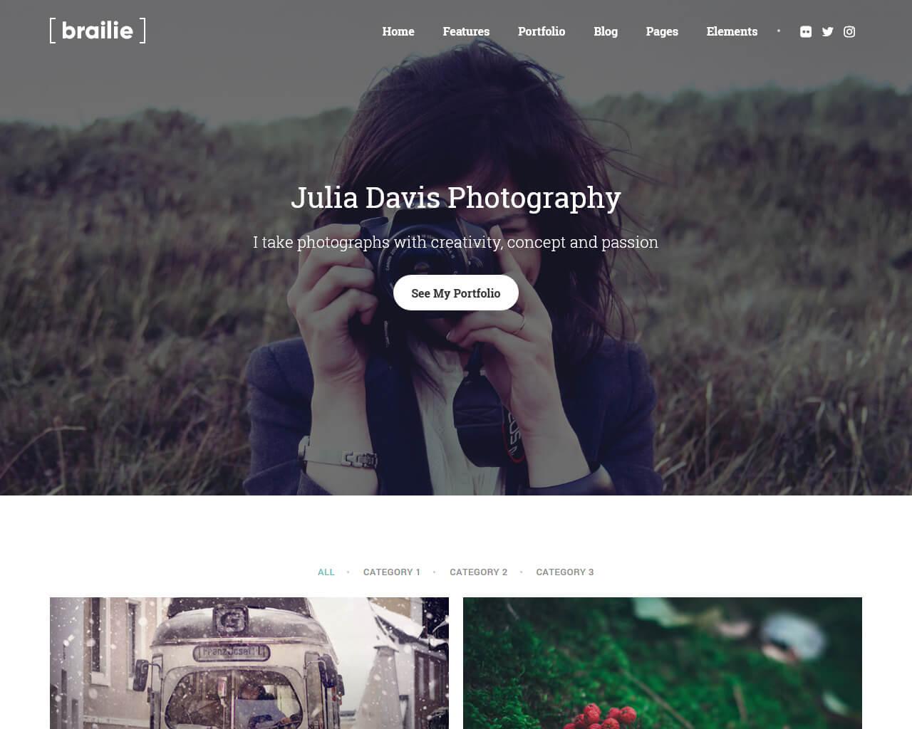 Brailie Website Template