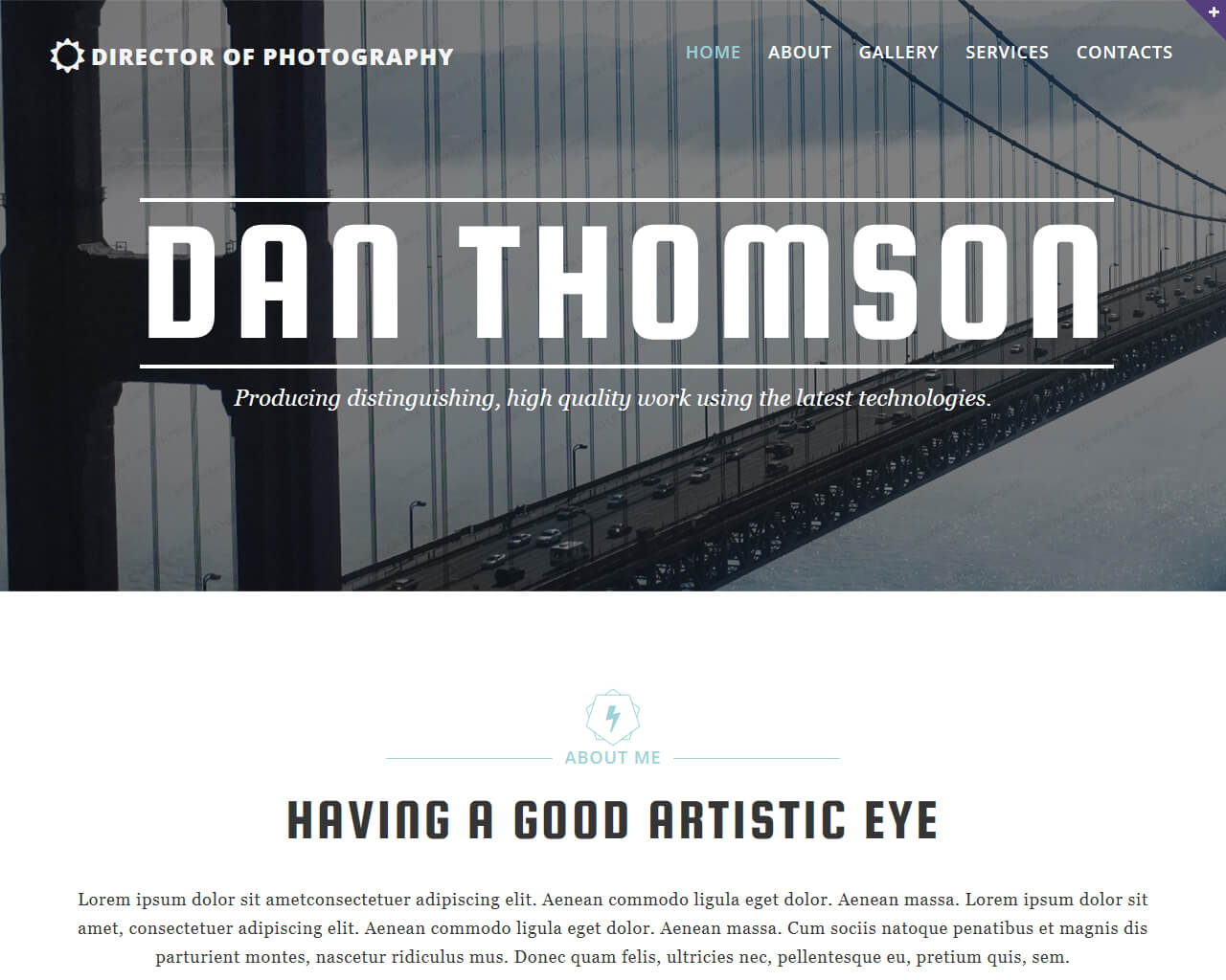 Dan Thomson Website Template