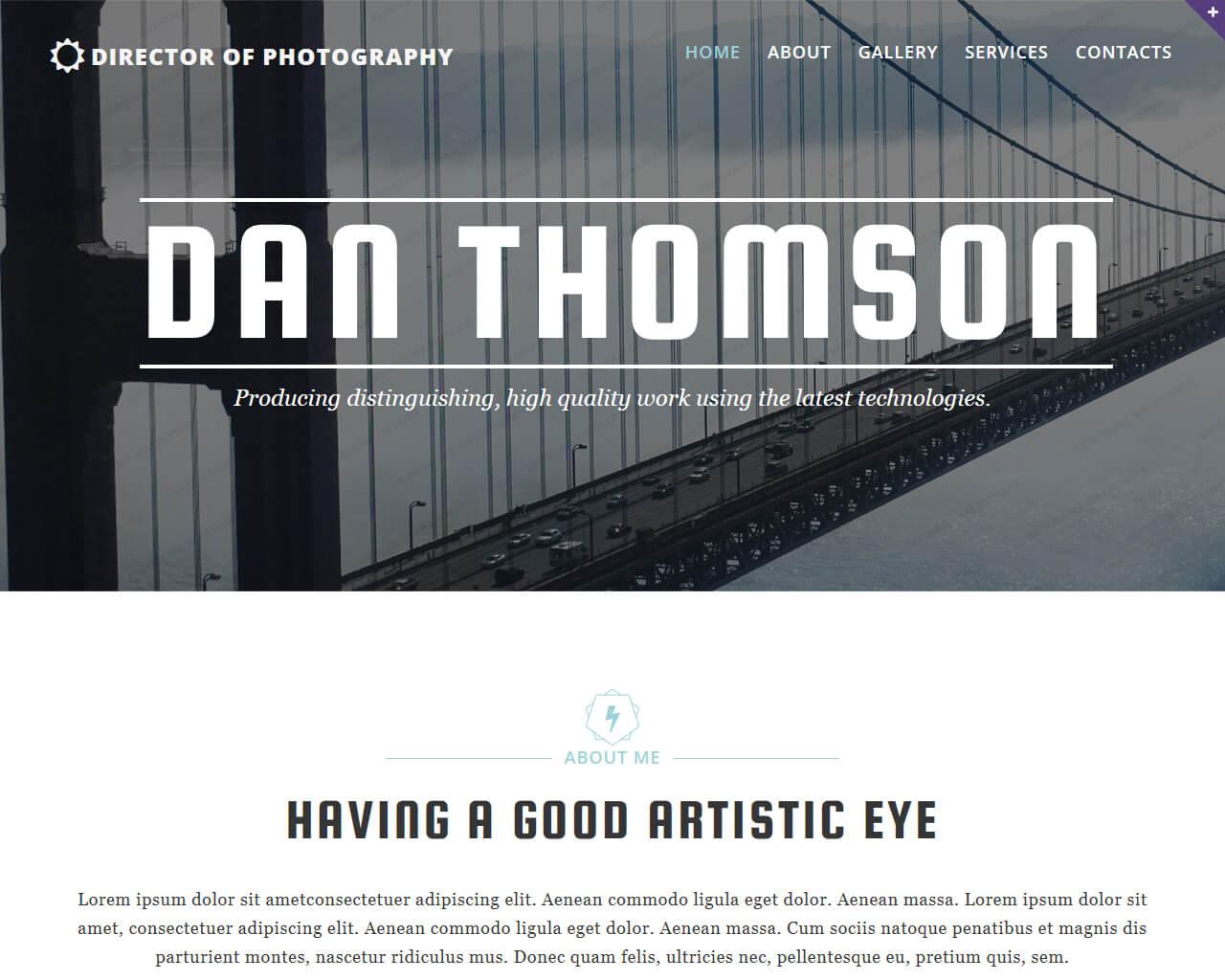 Dan Thomson Website Template