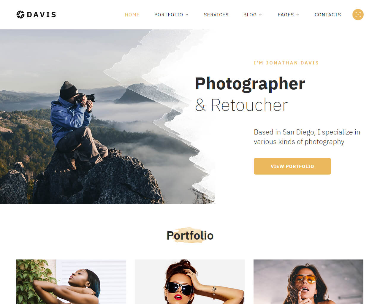 Davis Website Template