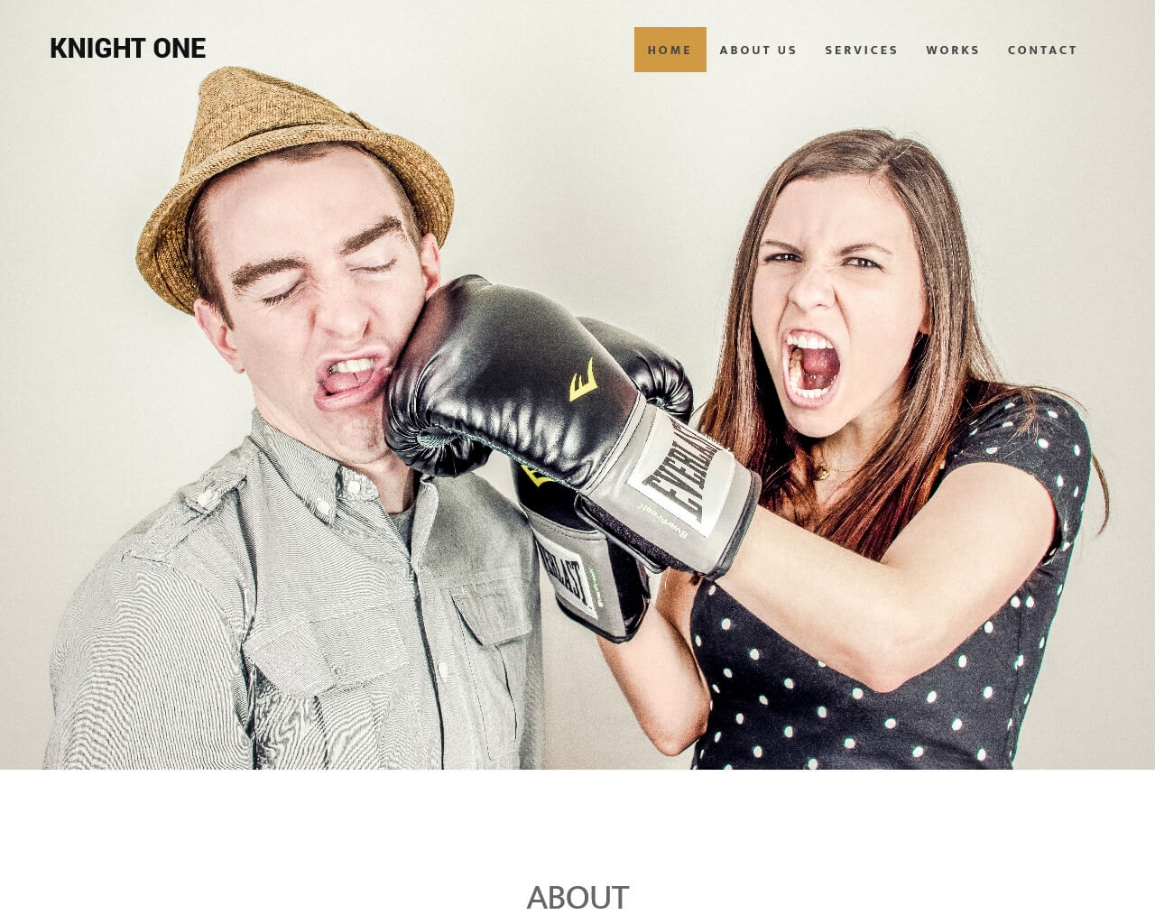 KnightOne - Simple One Page Bootstrap Template