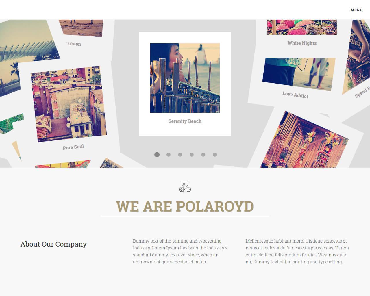 Polaroyd - Elegant Agency Template